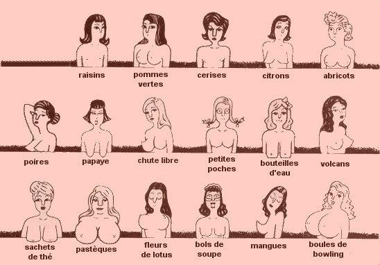 Vous ne devinerez jamais ce que la forme de vos seins peut dire de vous…